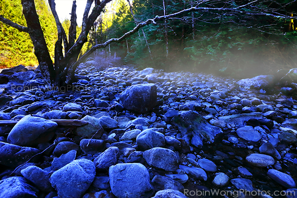 Maple Ridge photo_0732