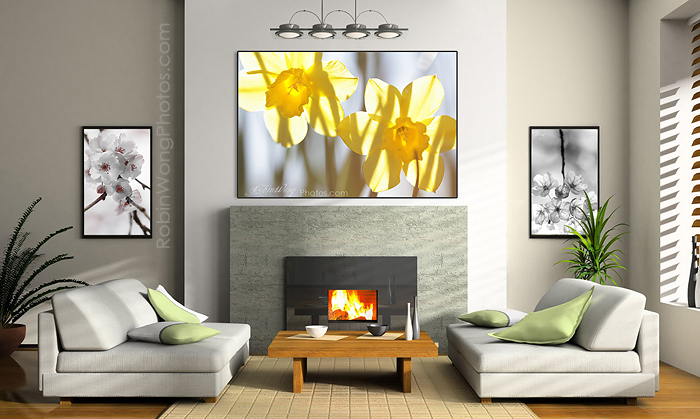 living-room-colors+Image-design
